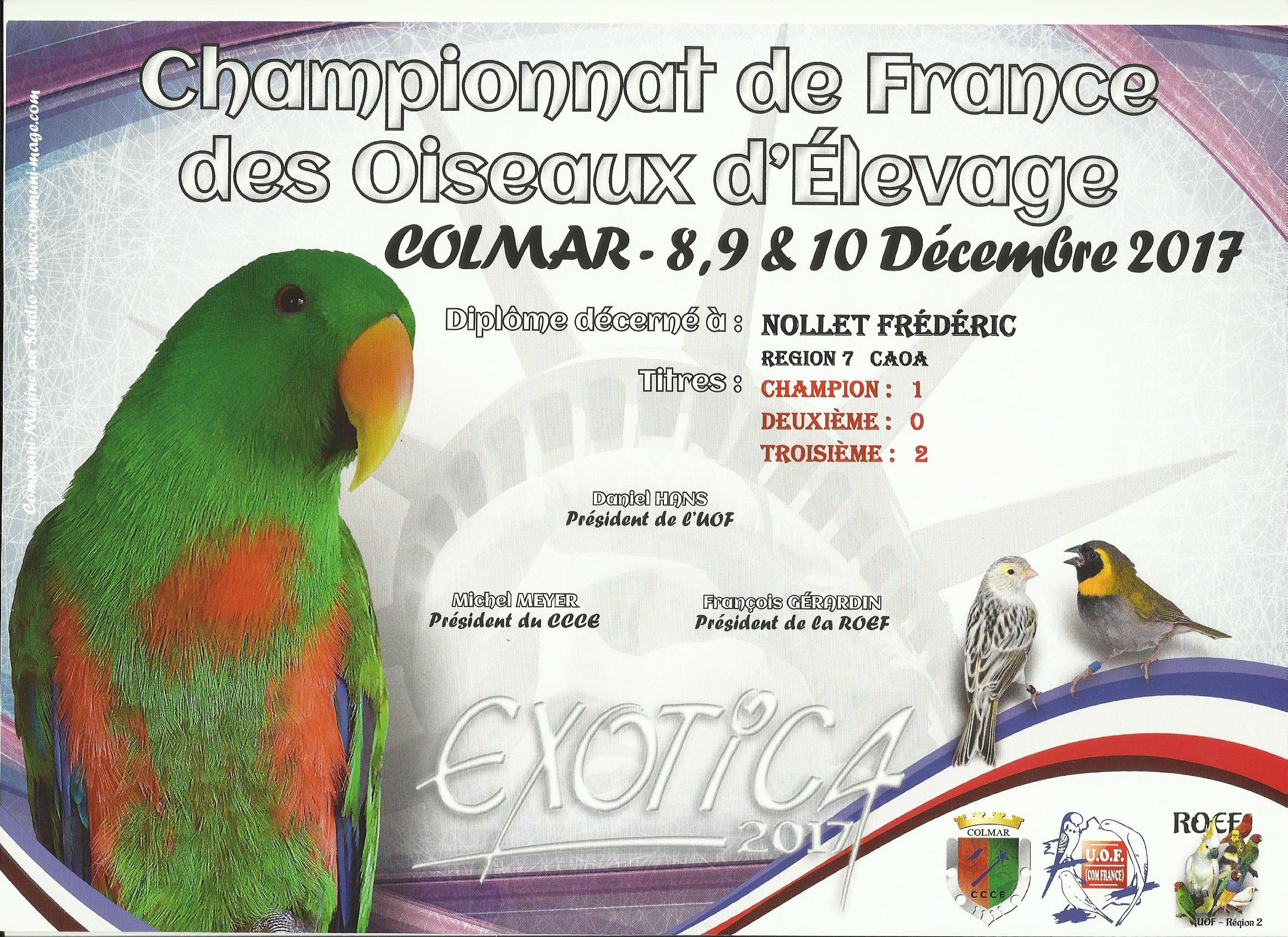 Championnat National - Colmar - Décembre 2017