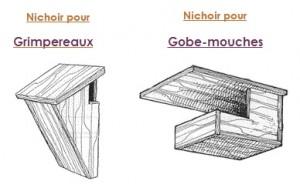 Nid Gobe mouche